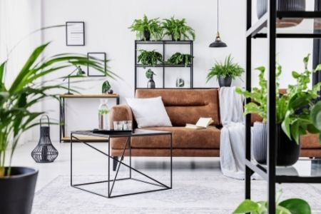 Home trend: Indoor Urban Jungle
