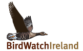 Ireland's birdlife is under the spotlight again